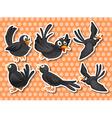 Black bird vector image vector image