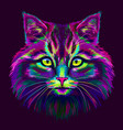 cat hand-drawn abstract multicolored portrait o vector image vector image