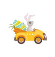 cute bunny driving yellow vintage car decorated vector image vector image