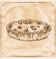 sweet retro pie with berries treat for the vector image