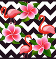 tropical modern seamless pattern with pink vector image vector image