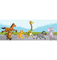 Wild animals running in race vector image vector image