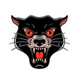 wild cat head in old school tattoo style design vector image