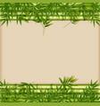 a green bamboo template vector image