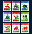 berries and sweet garden fruits price cards vector image vector image