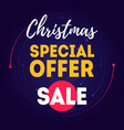 christmas sale special offer banner or poster for vector image