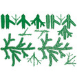 coniferous branch collection vector image vector image