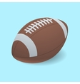 Football isolated on a background vector image vector image