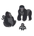 gorilla family monkeys set cute vector image vector image
