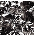 graphic palm leaves seamless background vector image