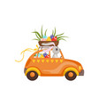 little bunny driving vintage car with easter eggs vector image