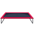 Trampoline with red edge vector image vector image