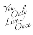 yolo text background vector image vector image