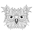 Hand drawn cute owl portrait for adult coloring vector image