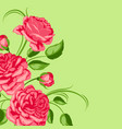 background with red roses beautiful decorative vector image vector image