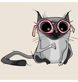 cartoon funny gray cat in pink glasses vector image vector image