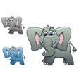 cute elephant baisolated on white background fo vector image vector image