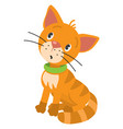 funny little cat or kitten vector image