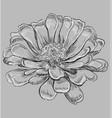 grey flower 6 vector image vector image