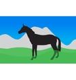 Horse Walks Eats the Grass EPS10 vector image