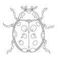 Ladybug coloring book vector image vector image