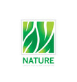 nature - concept business logo template