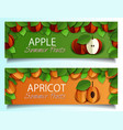 paper cut apple apricot fruit banner set vector image vector image