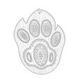 paw print shape of dog foot zen vector image vector image