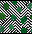 seamless tropical pattern with monstera vector image vector image