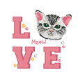 very cute small cat kitten with inscription love vector image
