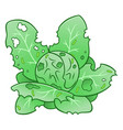 cabbage worm damage vector image vector image
