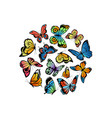 decorative butterflies in circle shape vector image