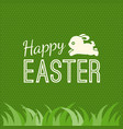 happy easter and bunny jump over grass vector image vector image