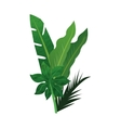 tropical leaves icon vector image vector image