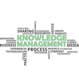 word cloud knowledge management vector image vector image