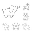an unrealistic outline animal icons in set vector image