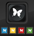 butterfly icon symbol Set of five colorful stylish vector image