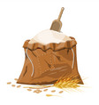 cloth sack with whole flour ear wheat and scoop vector image