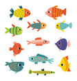 cute fish different kinds fish set vector image