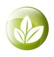 Leaves icon symbol design vector image