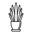 long high leaf houseplant icon outline style vector image vector image