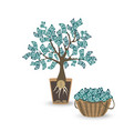 money tree with a coin root green cash banknotes vector image