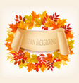 nature autumn background with colorful leaves vector image vector image