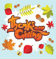 thanksgiving day lettering greeting card vector image vector image