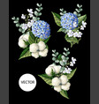 bouquet with hortensia cotton flowers vector image vector image