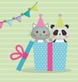 cute cat with bear panda sweet kawaii character vector image