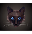 Dark cat with blue eyes - polygonal style vector image vector image