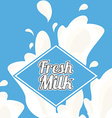 fresh milk design vector image