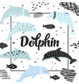nautical design with dolphins in childish style vector image