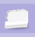 realistic 3d torn hole in paper sheet vector image